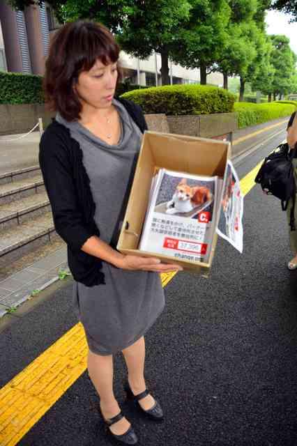 「猫殺した容疑者に懲役刑を」3万7千人分の署名集まる:朝日新聞デジタル