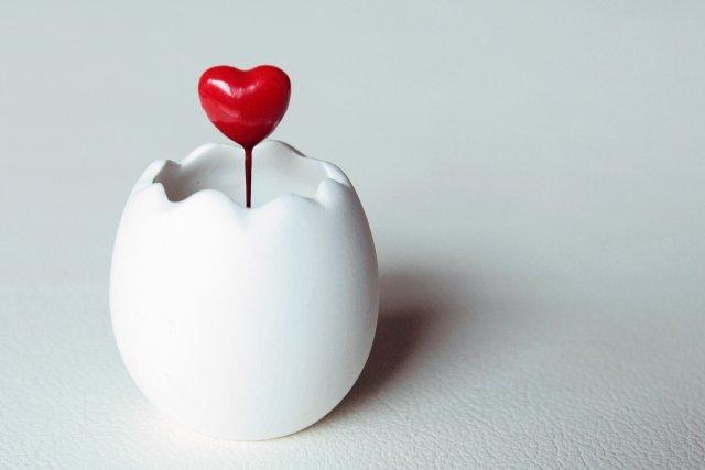 ガッテンで紹介!卵は賞味期限を過ぎても4か月まで食べられる!? | LIFE