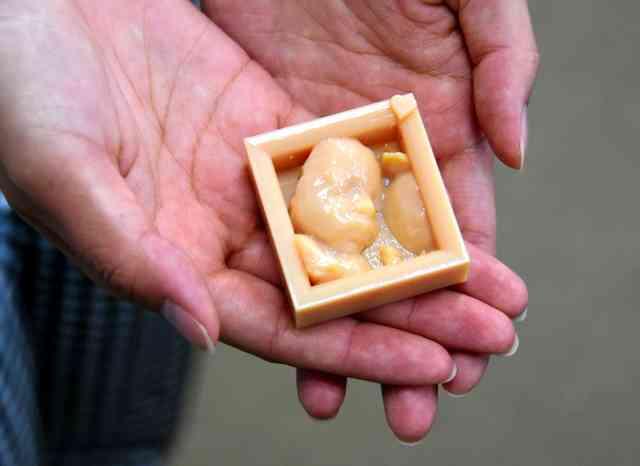 おなかの中の赤ちゃんをお手元に 3Dプリンターで再現