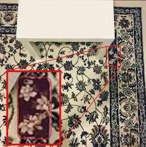 よく見ると何かが隠れている画像