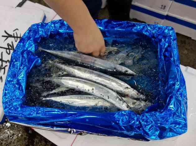 サンマ漁獲制限、合意できず 中国など反対  :日本経済新聞