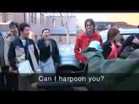 オーストラリア人はこうやって捕鯨問題をTV放送中 Australian - YouTube