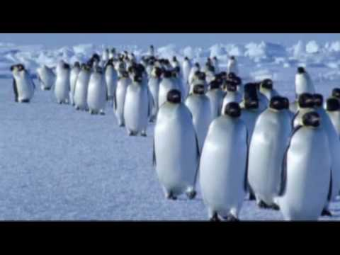 Vangelis - Theme from Antarctica - YouTube