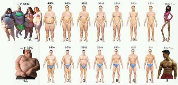 過去最大に痩せてた時と最高に太ってた時と現在の体重を書き込むトピ