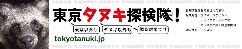 東京タヌキ探検隊! ハクビシンに出会ったならば