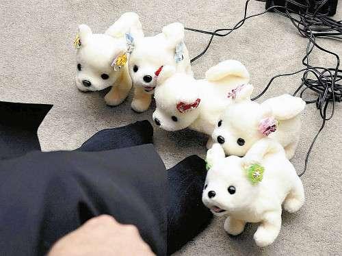 人の足のニオイ強いと「倒れて気絶」…犬型ロボ