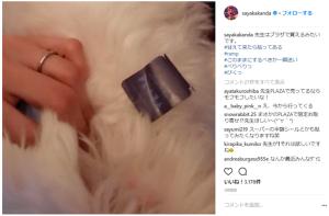神田沙也加、愛犬を披露するも別のところで批判の的に「犬より指輪を見せたいだけ?」(1ページ目) - デイリーニュースオンライン
