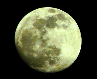 誰かに「月が綺麗ですね」と送ってみるトピ part5