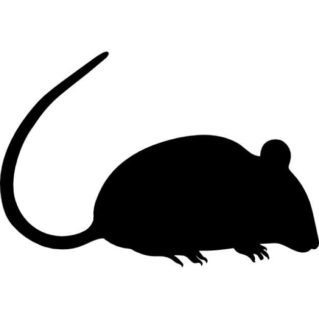 病気の少女、ベッドでネズミに襲われ顔など225か所にけが フランス