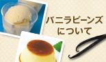 バニラビーンズについて|お菓子作り・パン作りの材料と道具の専門店|cuocaクオカ