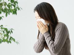 秋の花粉症、悪いのはセイタカアワダチソウじゃなかった! 真犯人はだれ?