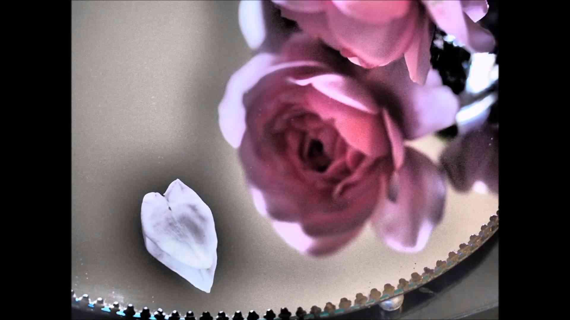 Alone 岡本真夜 - YouTube