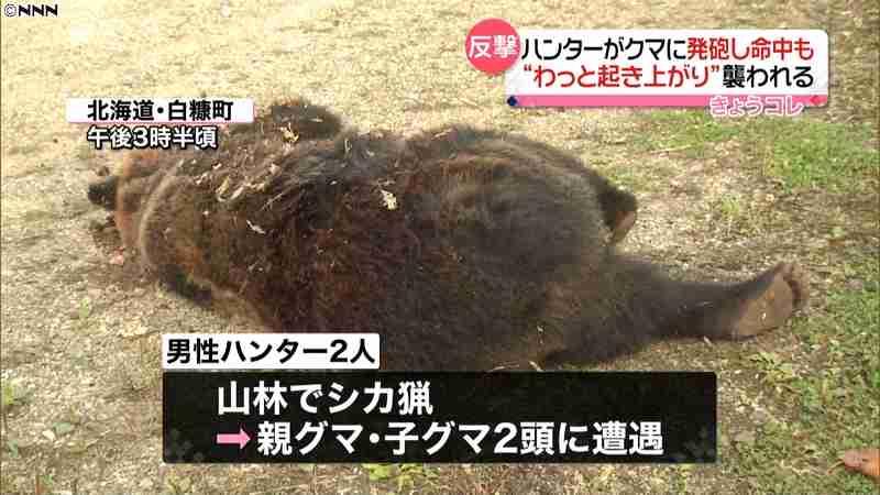 死んだはずのクマが反撃…ハンターがケガ 日テレNEWS24