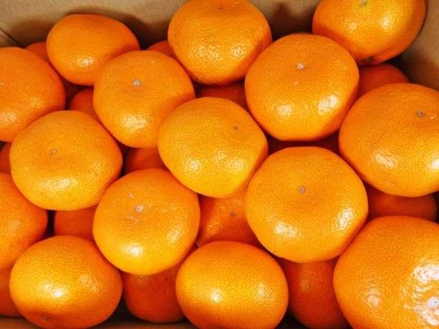 酸っぱいみかんを甘くする方法7選!美味しいみかんの見分け方は? | キラキラ情報館
