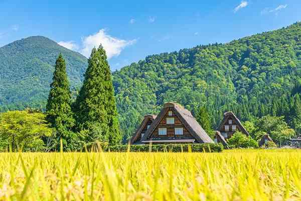 日本が先進国でも幸福度が低い理由