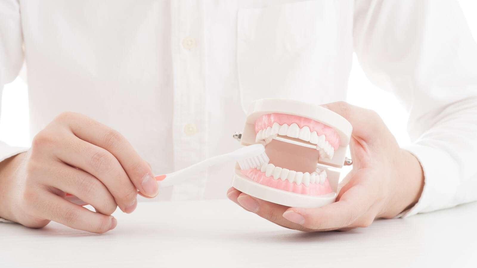 「歯周病」と「認知症」の切っても切れない関係   健康   東洋経済オンライン   経済ニュースの新基準