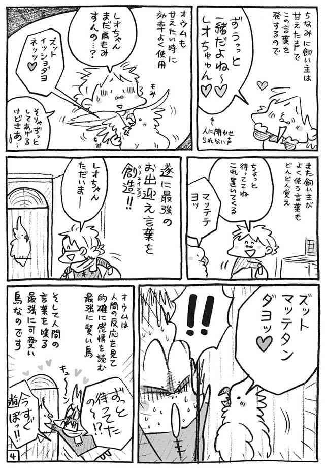 オウム「グッチュグッチュダヨ」謎の言葉の『真相』に、飼い主ビックリ!