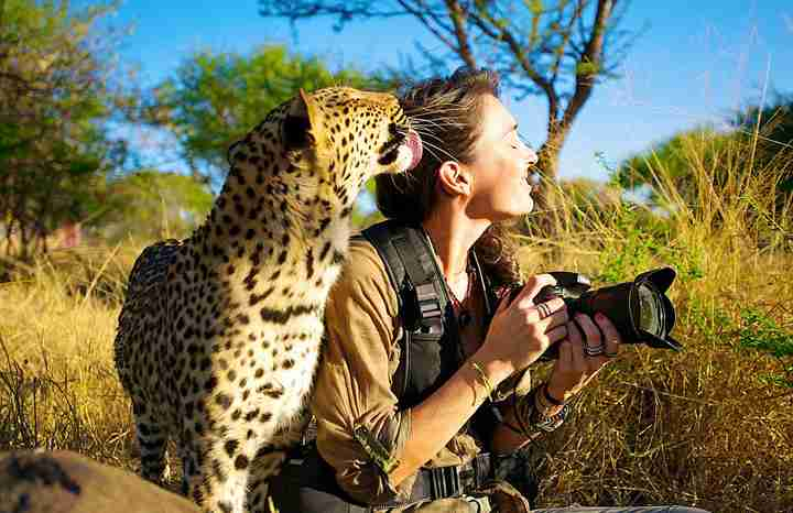 カメラマンと動物の画像