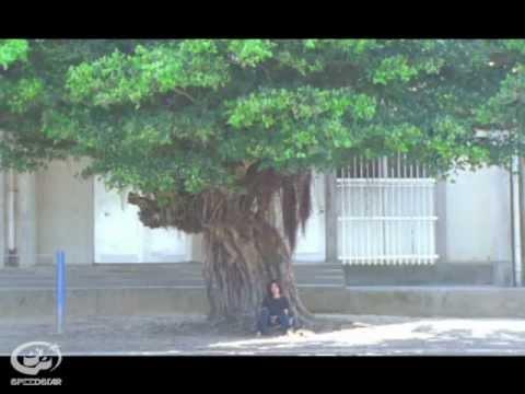 Cocco - 陽の照りながら雨の降る 【VIDEO CLIP SHORT】 - YouTube