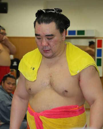 日馬富士 貴ノ岩に暴行疑惑 ビール瓶で殴打、右中頭蓋底骨折 (スポニチアネックス) - Yahoo!ニュース