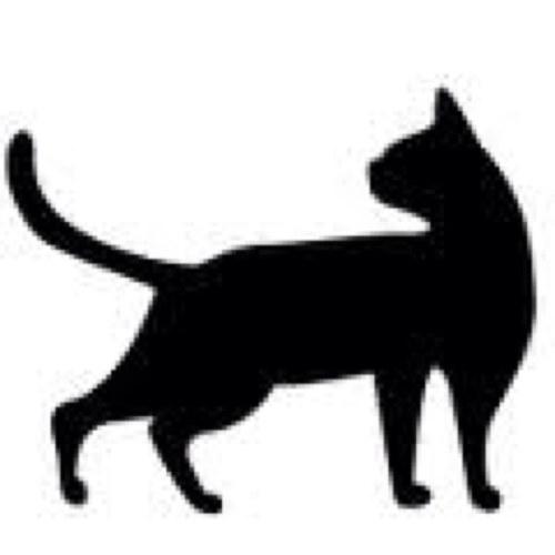 千葉・市川で猫の切断遺体見つかる