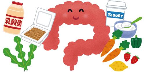 腸内環境に自信のある方!何を食べていますか?