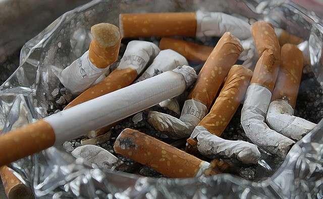 全文表示   三次喫煙の健康被害をマウスで確認 4か月で糖尿病リスクが上昇 : J-CASTヘルスケア
