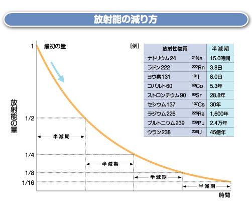 捕獲のニホンジカ 基準超える放射性セシウム検出 長野