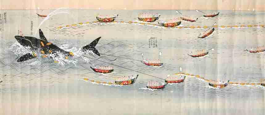 日本の調査捕鯨に勧告 政府は調査団を受け入れへ