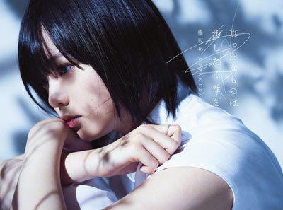 【悲報】マスコミ「欅坂46の客層は音楽ファン、ドルオタしか客がいないAKBとは違う」 : NOGIVIOLA -ノギビオラ-