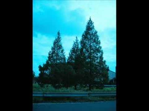 George Winston 『Autumn』 Longing Love - YouTube
