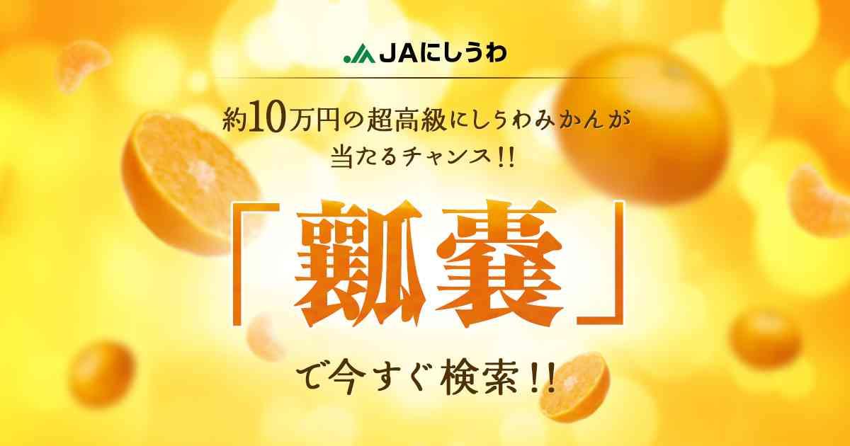 12個入り約10万円の超高級みかん、あなたに贈呈します!|JAにしうわ