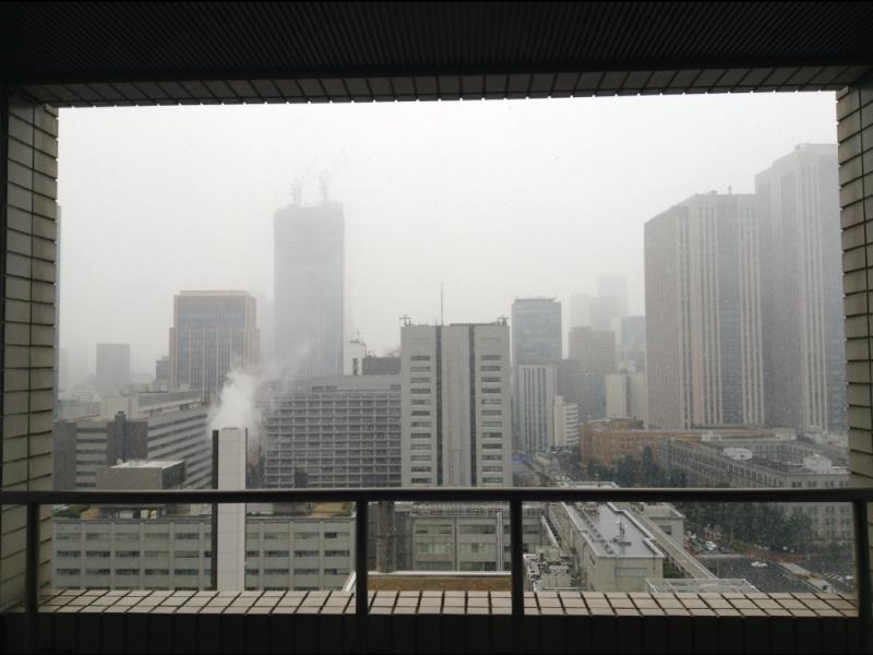 東京地裁429号法廷|御苑のベンゴシ 森川文人のブログ