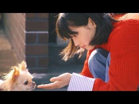 広瀬すず 戌年に犬とつくる年賀状(メイキング) フジカラー写真年賀状 - YouTube