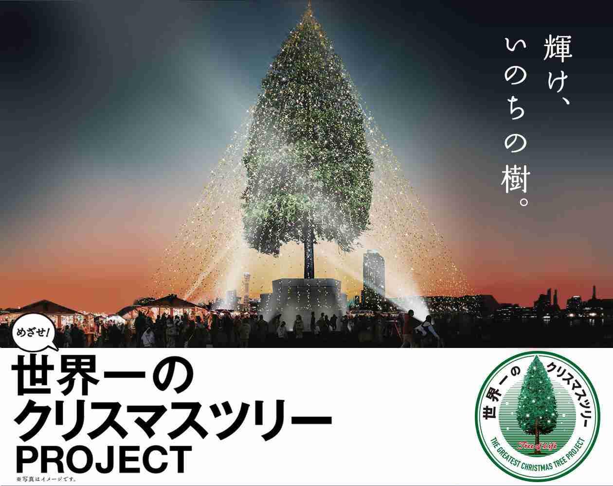 めざせ!世界一のクリスマスツリー