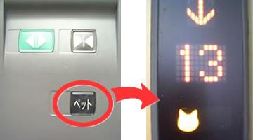 エレベーターの「ペットボタン」、知ってる? 導入の狙いや普及度、メーカーに聞くと…