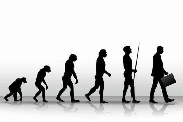 自分が進化したなと思うこと