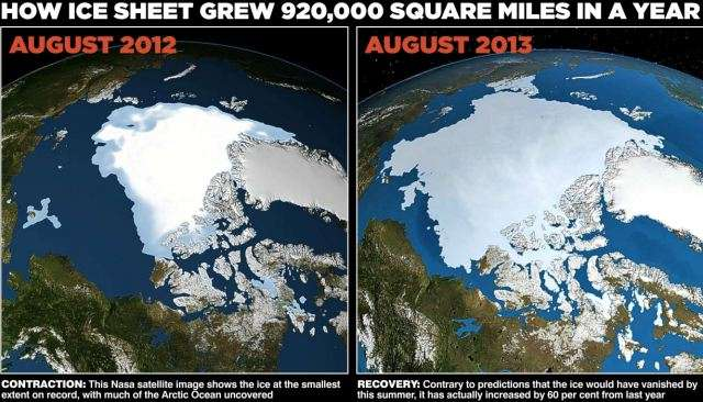 餓死寸前のホッキョクグマ、胸張り裂ける動画 地球温暖化のメッセージ伝えたい