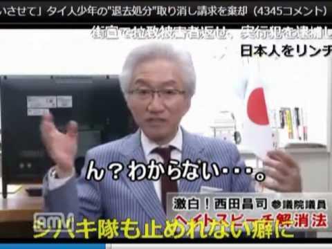ヘイトスピーチ法、本邦外出身は西田昌司が付け加えた法案! 1/2 - YouTube
