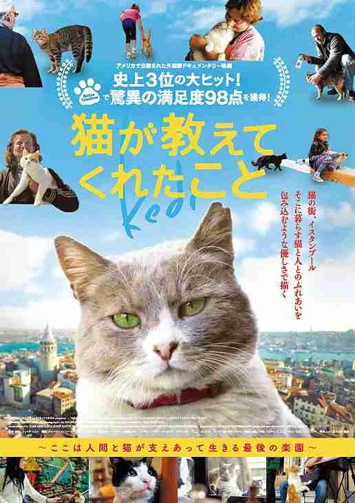 映画のポスターの日本版と海外版を比較しよう