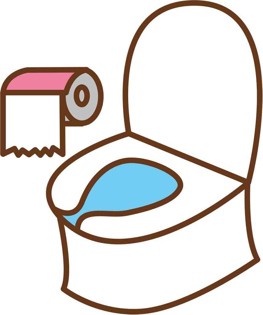 急げ!トイレの洋式化=訪日客増加で自治体調査へ-観光庁