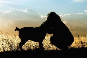 """辻希美の""""愛犬の妊娠""""に動物虐待疑惑?無神経すぎる行動に批判殺到(1ページ目) - デイリーニュースオンライン"""
