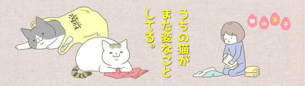 うちの猫がまた変なことしてる。 卵山玉子(たまごやま・たまこ) コミックエッセイ劇場
