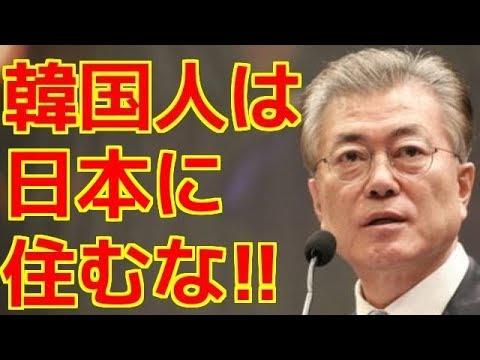 韓国政府、在日韓国人に『韓国帰化命』を出す!!!! 在日韓国人が帰国しない理由のお得意コピペが完全に通用しなくなったwww - YouTube
