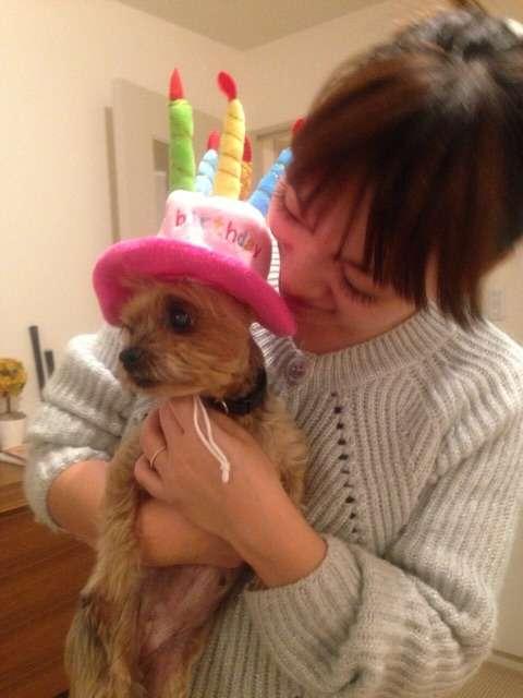 保田圭が15歳10ヶ月の愛犬・ティアラとのお別れを報告