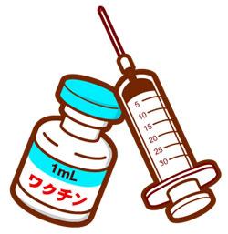 インフルエンザ ワクチン供給遅れ 12月半ばには安定へ