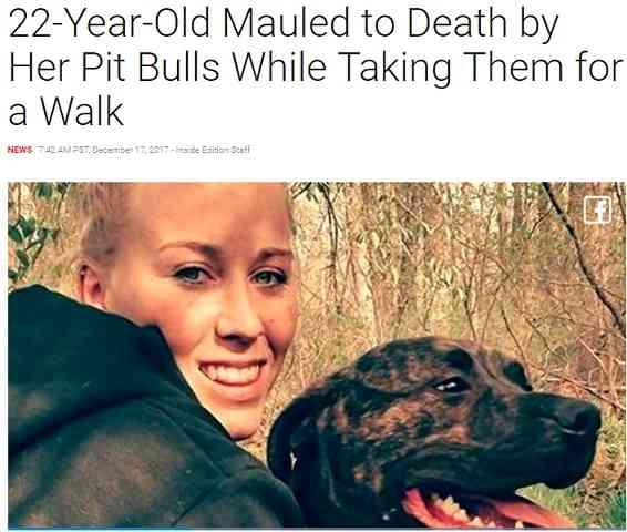 【海外発!Breaking News】またピットブル…22歳の飼い主が食い殺される 林を散歩中に豹変か(米)   Techinsight(テックインサイト) 海外セレブ、国内エンタメのオンリーワンをお届けするニュースサイト