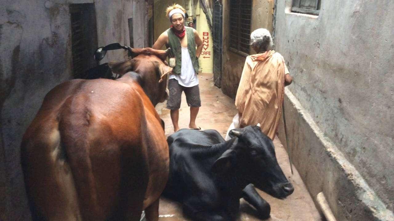 【衝撃】インドの路地裏で起こった事件 - YouTube