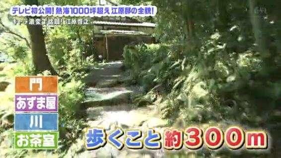 江原啓之、富岡八幡宮の宮司殺害事件で断言「たたり続けるヤツなんて祓ってやればいい」