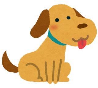 犬に好かれる人の特徴